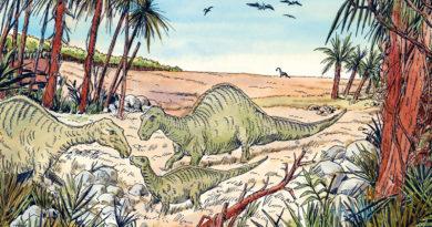 Dinosauriërs bij ons